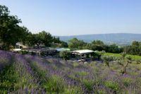 Jardin dans les Vignes Coquillade