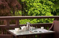 H�tel Royal - Vue terrasse chambre