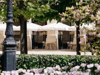 Terrasse - Restaurant du Palais Royal